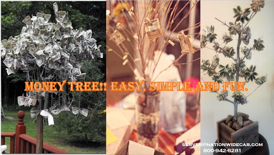 Money tree!!